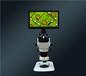 銷量好的三目視頻顯微鏡供應商_廠家供應三目視頻顯微鏡