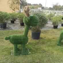 成都动物园创意小动物造型雕塑图片