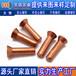 深圳质量好的铜铆钉出售-铜铆钉厂
