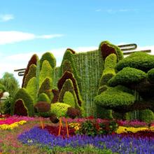 景赐艺雕的仿真材质绿雕造型适合各种场地摆放图片