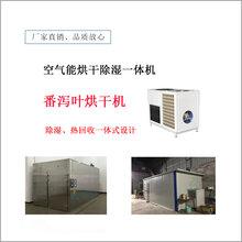 番泻叶烘干机价格,空气能热泵药材烘干机生产厂家