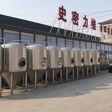 300升精酿啤酒设备300升原浆啤酒设备啤酒设备厂家图片