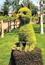 成都仿真雕塑造型仿真绿雕大型绿雕造型设计制作厂家材质好颜色搭配好使用时间长图片