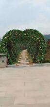 四川立体景观雕塑室外绿雕造型专业生产图片