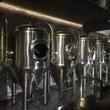 500升精酿啤酒设备音乐餐吧啤酒设备图片