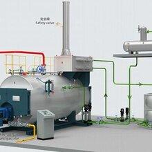 滁州蒸汽锅炉生产