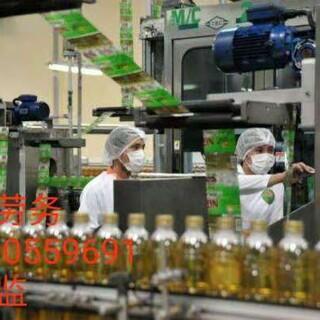 爱尔兰美国正规劳务派遣年薪36万保底巧克力厂奶粉厂图片3