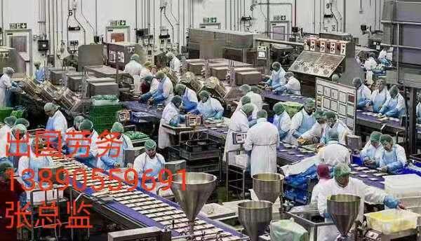 德国厨师新西兰工厂3万保底 包吃包住出国劳务公司