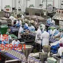 出國打工安全嗎瑞典簽證瑞典打工水產品廠普工3萬保底正規勞務中介圖片