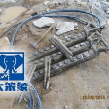 赣州劈裂棒厂 大笨象图片