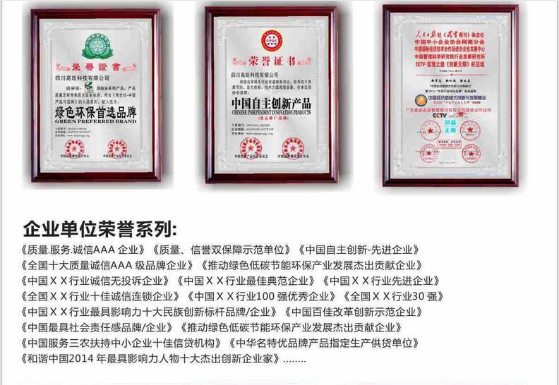 惠州公司榮譽獎牌