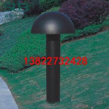 室外防水亚克力落地灯户外公园小区草坪灯中式不锈钢蘑菇形草地灯定制图片