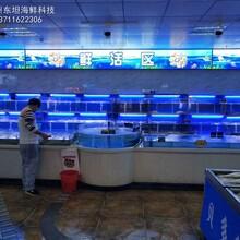 江門海鮮池定做費用 專業生產廠家 東坦海鮮魚池定做圖片