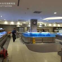 江門海鮮池定做廠家 在線免費報價 東坦海鮮魚池定做圖片