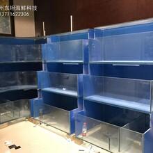 海鮮池定做 飯店海鮮魚池定做 東坦海鮮魚池定做圖片