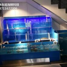 佛山海鮮池安裝 海鮮魚缸 定做東坦魚池圖片