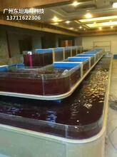 廣州定做超市魚池 可移動海鮮池圖片