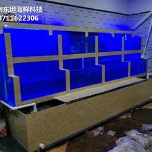 廣州定做超市魚池 大排檔海鮮魚池 廣州海鮮池圖片