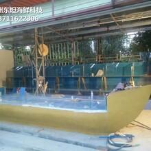 深圳龍崗海鮮池定制 海鮮魚缸圖片