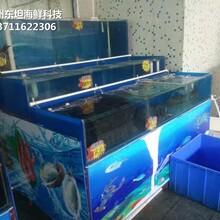 中山港口海鮮池廠家 海鮮魚池圖片