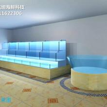 廣州海鮮魚池冷水機 不銹鋼海鮮池 定做東坦魚池圖片