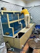 廣州從化哪里訂做水產店制冷魚池 超市魚池 廣州海鮮池圖片