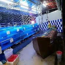 深圳寶安海鮮池圖片 玻璃魚缸圖片
