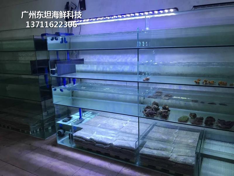 廣州蘿崗海鮮魚缸過濾系統