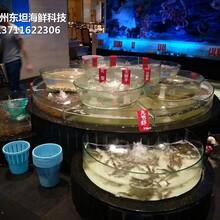 廣州荔灣海鮮魚缸多少錢平方 玻璃海鮮池圖片