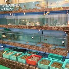 廣州玻璃海鮮池尺寸 海鮮池圖片
