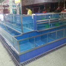 廣州南沙定做可移動海鮮池 超市魚池 廣州海鮮池圖片