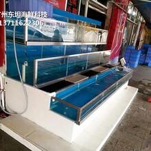 東莞長安海鮮魚缸設計 酒店海鮮池 貝殼魚池蝦蟹魚池圖片