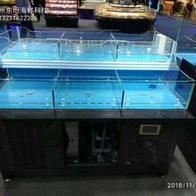 中山海鮮池定做費用 飯店海鮮魚池定做圖片