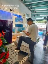 廣州天河海鮮池定制 海鮮魚缸圖片