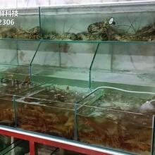 飯店海鮮池 餐飲魚池 貝殼魚池蝦蟹魚池圖片
