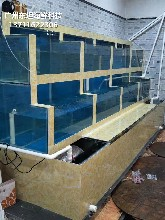 廣州天河哪里訂做海鮮市場玻璃魚池 水產店制冷魚池圖片