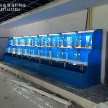 惠州海鮮池定做多少錢 飯店海鮮魚池定做 在線免費報價圖片