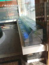 中山海鮮魚缸定做價格 海鮮魚缸 梯形魚池土建魚池圖片