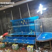 廣州越秀哪里訂做海鮮市場玻璃魚池 大排檔海鮮魚池圖片