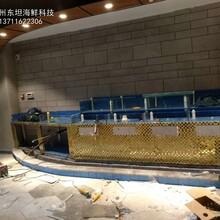 惠州海鮮池定做哪家質量好 飯店海鮮魚池定做 可定制圖片