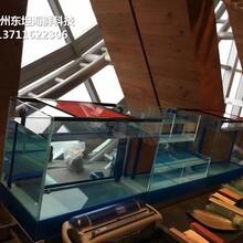 東莞常平哪里定做飯店海鮮池 餐飲魚池圖片