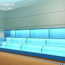 廣州白云玻璃海鮮池過濾系統 海鮮池 梯形魚池土建魚池圖片