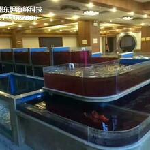 廣州海珠定做可移動海鮮池 超市魚池圖片
