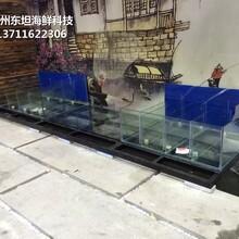 珠海餐飲魚池效果圖 不銹鋼海鮮池圖片