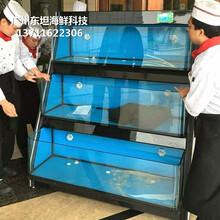 東莞南城海鮮魚缸定做公司 酒店海鮮池圖片