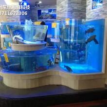 深圳海鮮魚池尺寸 玻璃魚缸圖片