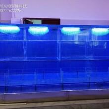 深圳飯店海鮮魚池定做費用 飯店海鮮魚池定做圖片
