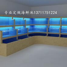 廣州珠吉海鮮池制冷 海鮮魚缸 天河海鮮池訂做圖片