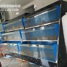 深圳酒店海鮮池定做電話 飯店海鮮池圖片