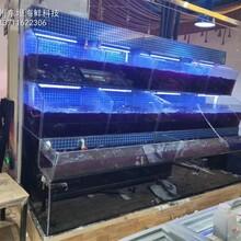 深圳海鮮池定做電話 飯店海鮮魚池定做 專業生產廠家圖片